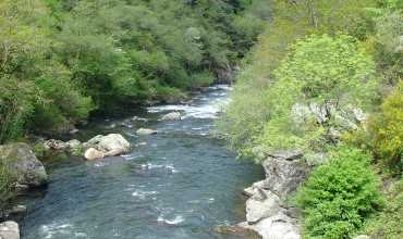 Río Lérez - Red natura 2000 - CAMPO LAMEIRO